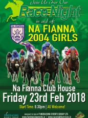 Na Fianna GAA Club 2004
