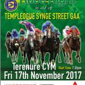 Tempelogue Synge Street GAA