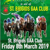 St. Brigids GAA, Castleknock